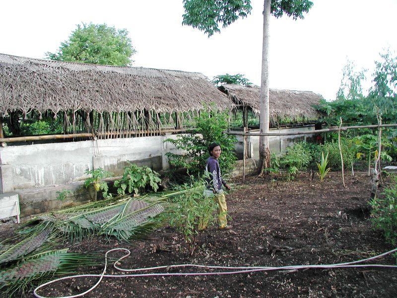 Aquaculture111701 (1)
