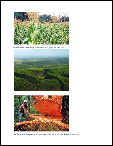 BrazilForestryAgri