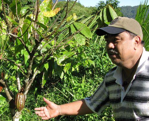 016 Agroforestry